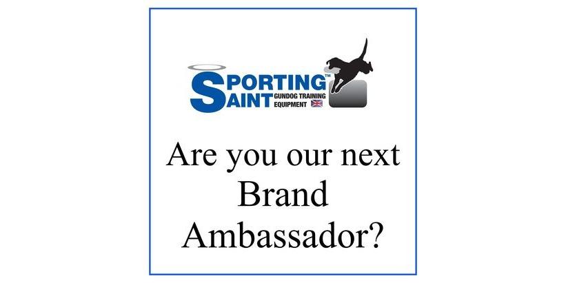 Are you our next Brand Ambassador?