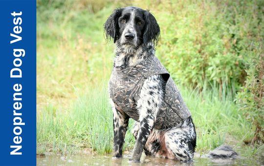 Neoprene Dog Vests
