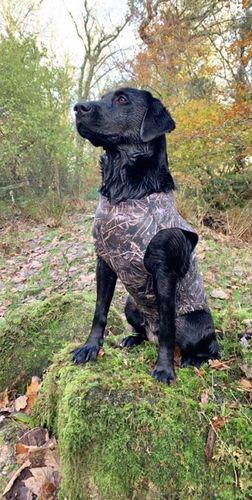 Neoprene Dog Vest image #2
