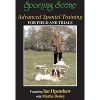 Advanced Spaniel Training for Field & Trials