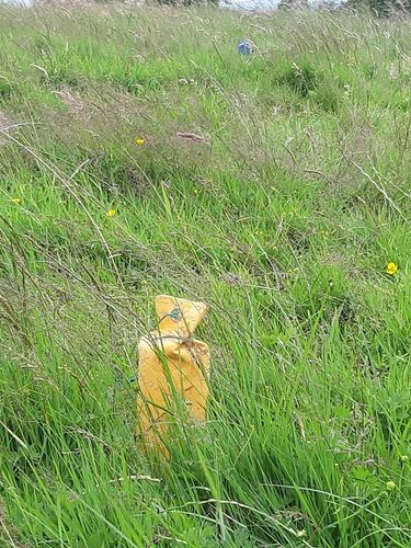 NEW! Drill Dummy by Laura Hill image #4