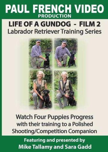 Life of a Gundog - Film 2 - Labrador Retriever Training Series  image #1