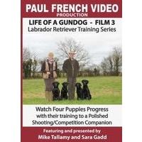 Life of a Gundog - Film 3 - Labrador Retriever Training Series