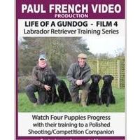Life of a Gundog - Film 4 - Labrador Retriever Training Series