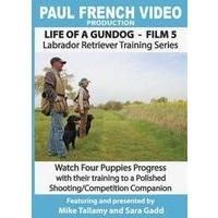 Life of a Gundog - Film 5 - Labrador Retriever Training Series