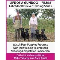 Life of a Gundog - Film 8 - Labrador Retriever Training Series