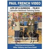 Life of a Gundog - Film 9 - Labrador Retriever Training Series