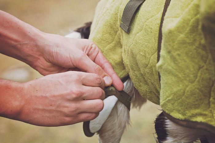 SICCARO Supreme Pro Dog Drying Robe - Olive image #8