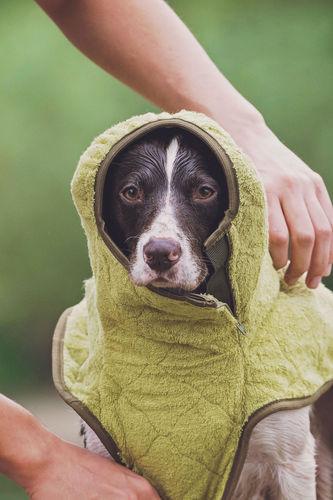 SICCARO Supreme Pro Dog Drying Robe - Olive image #5