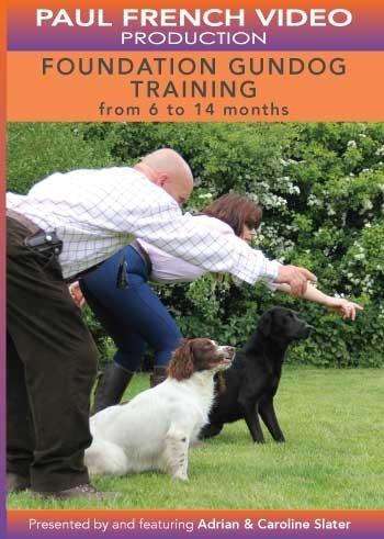 Foundation Gundog Training with Adrian & Caroline Slater image #1