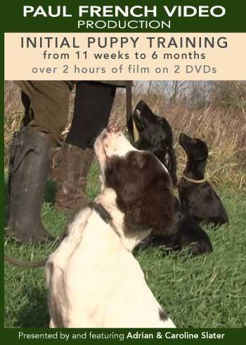 Initial Puppy Training with Adrian & Caroline Slater  image #1