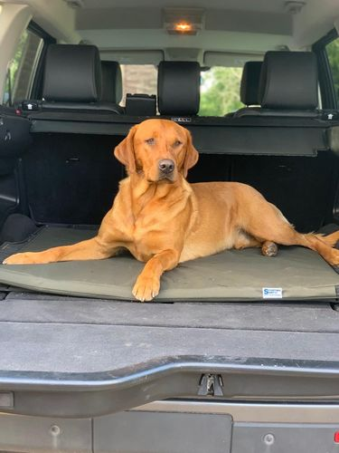 Large in the boot of a discovery