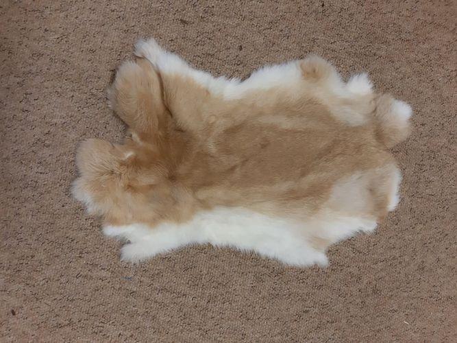 Cured Rabbit Skin  image #2