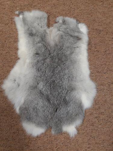 Cured Rabbit Skin  image #3