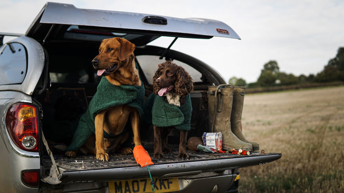 Towelling Dog Coats image #2