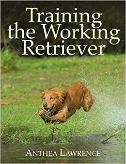 Training the Working Retriever - Anthea Lawrence image #1