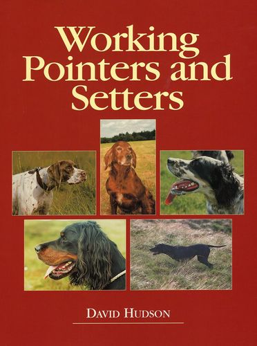 Working Pointers and Setters - David Hudson image #1