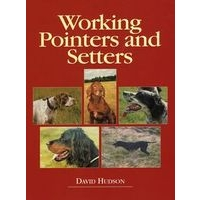 Working Pointers and Setters - David Hudson